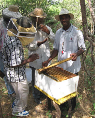 benito_teaching_beekeepers_small